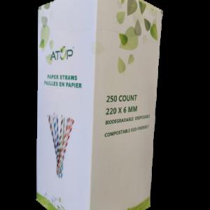 Paper Straws – 250/BOX